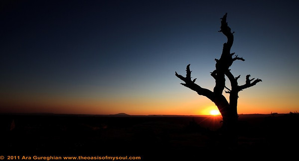 Sunset on Muley Point